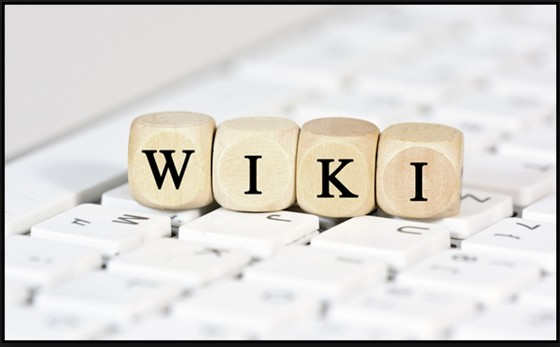 adult webcam wiki provides useful information about all topics related to adult webcam sites